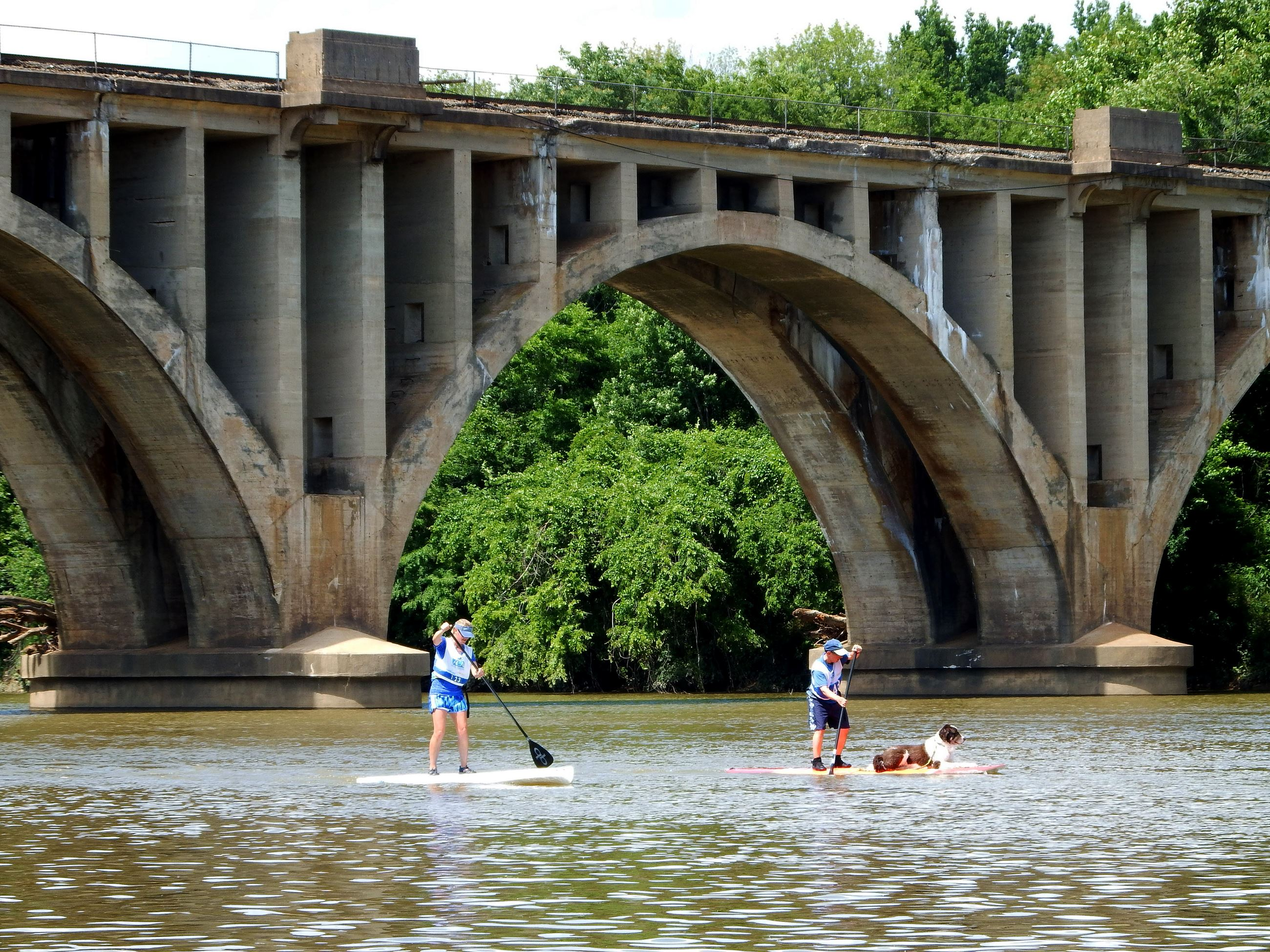 Paddle Board Duo Dog on Board Under Railroad Bridge